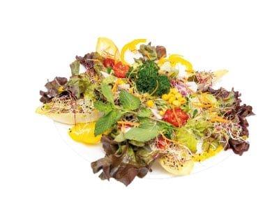 Gemischter Salat bestellen Regensdorf